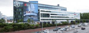 Byggvepa på ÅFs huvudkontor